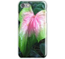 Awesome nature blessing all to see iPhone Case/Skin