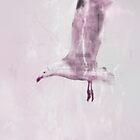 Arctic tern by DoraBirgis