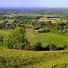 Sussex from South Downs (panorama) by Stephen Frost