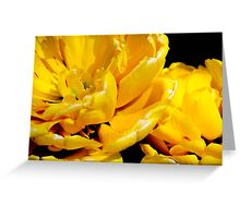 Yellow Pomponette Greeting Card