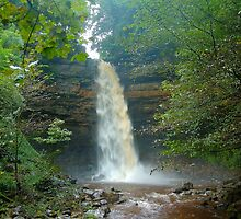 Hardraw Force by Stephen Frost