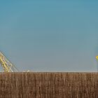 The Cranes by pixelfan