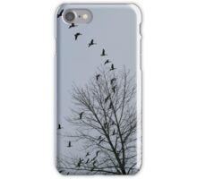 Grey Skies iPhone Case/Skin