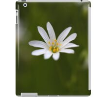 Flower of the  greater stitchwort iPad Case/Skin