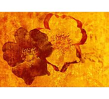 Cool, unique red yellow asian style art design Photographic Print