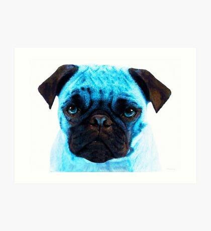 Blue - Pug Pop Art By Sharon Cummings Art Print