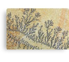 Dendritic minerals  of iron- and manganese oxides Canvas Print
