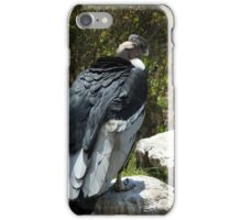 Andean Condor on Rocks iPhone Case/Skin