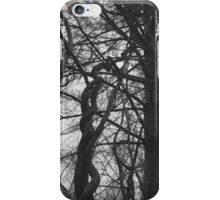 Helicoid iPhone Case/Skin