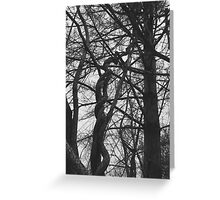 Helicoid Greeting Card