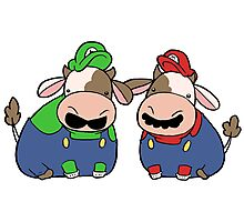 Super Cow Brothers Photographic Print