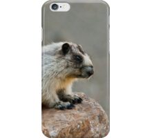 Hoary Marmot on a Boulder iPhone Case/Skin