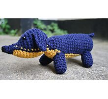 Sausage Dog dachshund crochet photograph Photographic Print