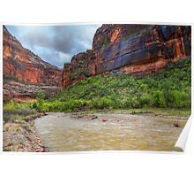USA. Utah. Zion National Park. River. Poster