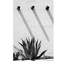 Patterns of Vigas and Succulents Photographic Print
