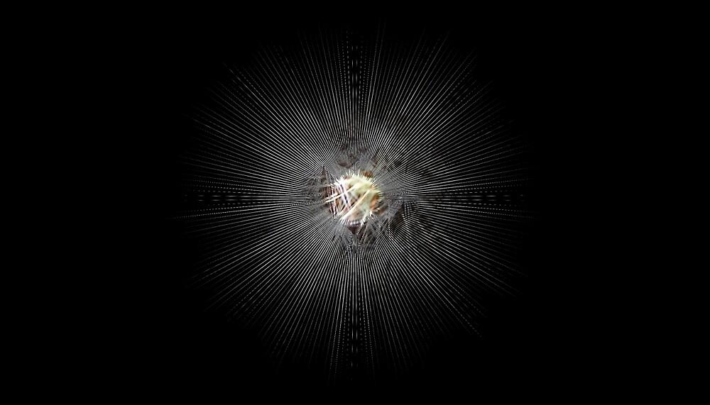 A Star Is Born by Benedikt Amrhein