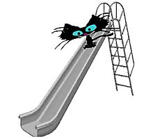 Cat On A Slide Photographic Print