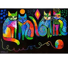 Abstract Cats ( HBAS demo ) Photographic Print
