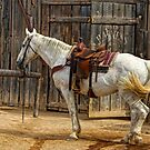Ready To Ride by Larry Costales