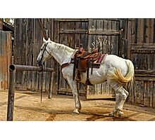 Ready To Ride Photographic Print