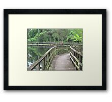 Wildlife in Jamaica Framed Print