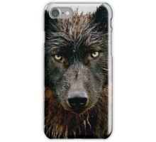 In the Eye of the Wolf iPhone Case/Skin