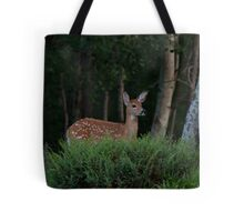 Fawn in forest Tote Bag