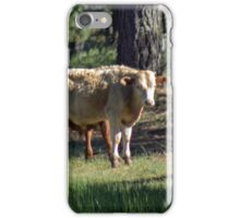 Fluffy Cows iPhone Case/Skin