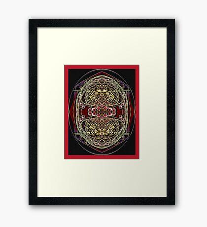 PANSPERMIA HYPOTHESIS 789 Framed Print