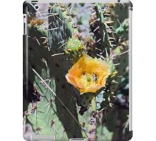 Prickly pear Cactus Flower and Bumble bee iPad Case/Skin