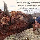 For Ferdie the bull by vigor