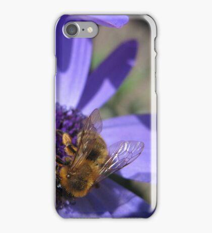 Honey, Honey! iPhone Case/Skin