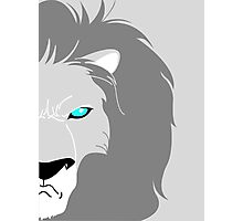 Lion Helmsley Photographic Print