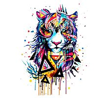 Lion King Colorful  Photographic Print