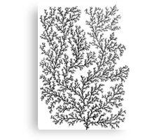 Minimal- white Metal Print