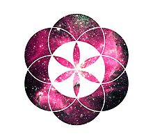 Magellan Red | Sacred Geometry Flower of Life Sticker Photographic Print