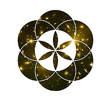 Yellow Galaxies | Sacred Geometry Flower of Life Photographic Print
