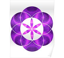 Purple Circles | Sacred Geometry Flower of Life Poster