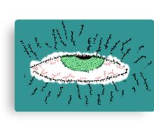 It's all In Your Vision Canvas Print