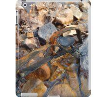 Rusty Trap iPad Case/Skin