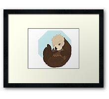 Adorable Sea Otter  Framed Print