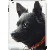 Black Dog iPad Case/Skin
