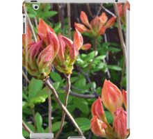 Floral Aesthetic 4 iPad Case/Skin