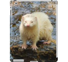 A Watery Scowl iPad Case/Skin