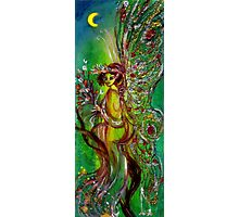 GREEN FAIRY WITH GOLD SILVER SPARKLES IN MOONLIGHT Photographic Print