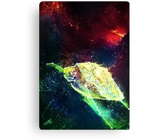 Turtle Constellation Canvas Print
