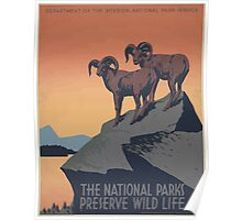 WPA United States Government Work Project Administration Poster 0019 The National Parks Preserve Wildlife Poster