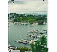 norway iPad Case/Skin