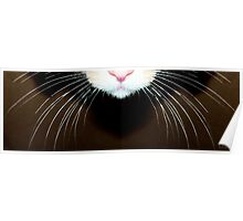 Cat Art - Super Whiskers Poster