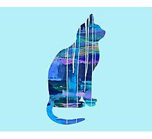 Galaxy Cat Photographic Print